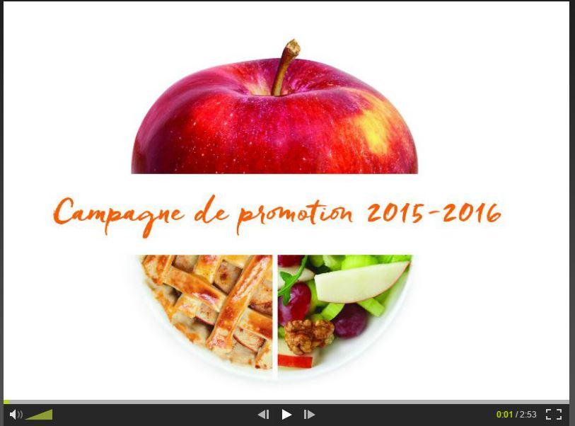 Image Vidéo Web_2